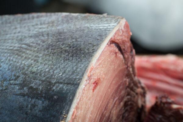 taglio-tonno-rosso-bottarga-alfio-visalli_R_T_9966